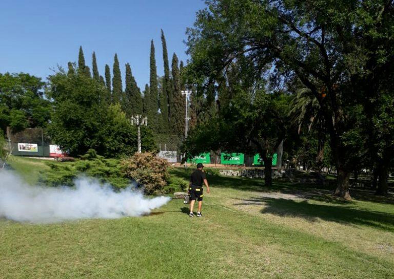 Se realizarán fumigaciones contra alacranes en Alta Gracia