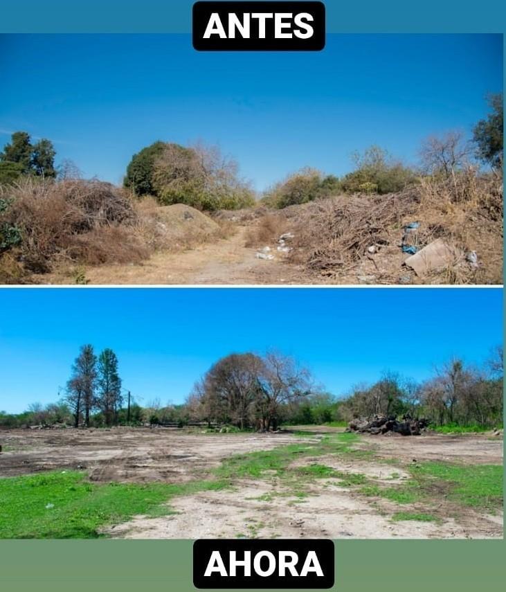 ALTA GRACIA MÁS VERDE: Continúa la remediación del predio de ramas y podas en las Lagunas Sanitarias